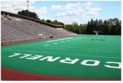 Cresent-Stadium-1