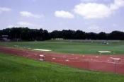 D.B-Milne-Field-3