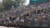 hornet-stadium